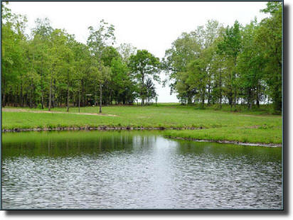 A well designed lake project fits the natural surroundings.